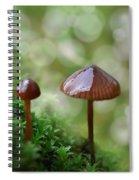 Little Mushroom Reflections Spiral Notebook