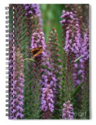 Little Orange And Black Butterfly Spiral Notebook