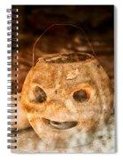 Little Orange Face Spiral Notebook