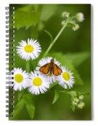 Little Orange Skipper Spiral Notebook
