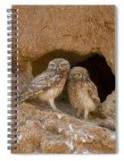 Little Owl Athene Noctua  Spiral Notebook