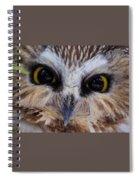 Little Owls Spiral Notebook