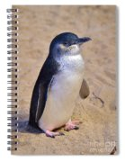 Little Penguin Spiral Notebook