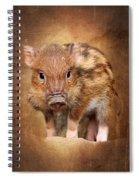 Little Pig Spiral Notebook