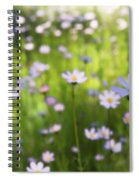 Little Pink Daisies  Spiral Notebook