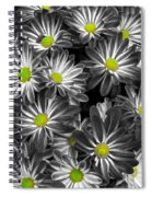 Little Rays Of Sunshine Spiral Notebook