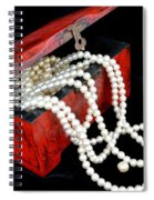 Little Red Box Spiral Notebook