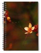 Little Red Flowers Spiral Notebook