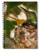 Little Reparing Spiral Notebook