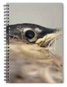 Little Robin Spiral Notebook