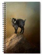 Little Rock Climber Spiral Notebook