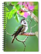 Little Ruby - 6763-001 Spiral Notebook