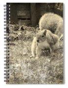 Little Scamp Spiral Notebook