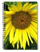 Little Sunshine Spiral Notebook