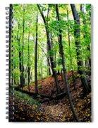 Little Valley 2 Spiral Notebook