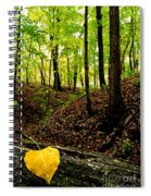 Little Valley 4 Spiral Notebook