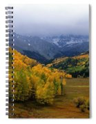 Little Meadow Of The Sublime Spiral Notebook