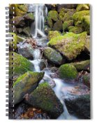 Little Waterfall In Marlay Park Spiral Notebook