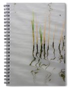 Little Waves Spiral Notebook