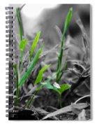 Live Green Spiral Notebook