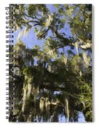 Live Oak Dripping With Spanish Moss Spiral Notebook