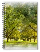 Live Oak Journey Paint Spiral Notebook