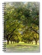 Live Oak Journey Vignette Spiral Notebook