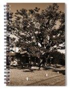 Live Oak Outer Banks Spiral Notebook