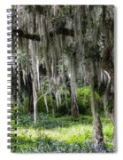Live Oak Tree II Spiral Notebook
