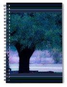 Live Oak Tree In Cemetery Spiral Notebook