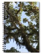 Live Oak Tree With Moss Spiral Notebook