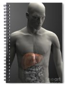 Liver Male Spiral Notebook