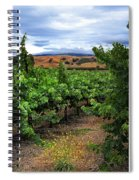 Livermore Vineyard 1 Spiral Notebook