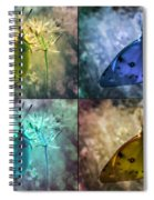 Lives Of A Butterfly Spiral Notebook