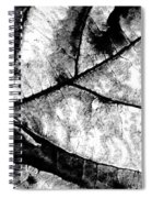 Living Structure I Spiral Notebook