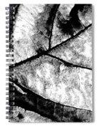 Living Structure I Spiral Notebook