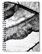 Living Structure IIi Spiral Notebook