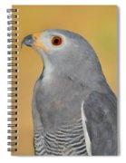 Lizard Buzzard Spiral Notebook