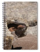 lizard from central Madagascar Spiral Notebook