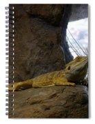 Lizard Of Oz Spiral Notebook