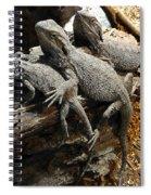 Lizards Spiral Notebook