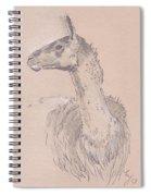 Llama Drawing Spiral Notebook