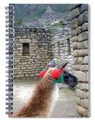 Llama Touring Machu Picchu Spiral Notebook