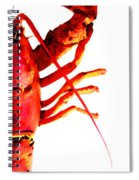 Lobster - The Right Side Spiral Notebook