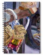 Locks Of Luck Spiral Notebook