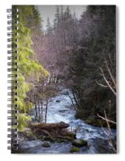 Log Jam Spiral Notebook