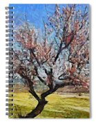 Lone Almond Tree In Bloom Spiral Notebook