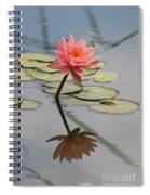 Lone Beauty  Spiral Notebook