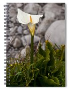 Lone Calla Lily Spiral Notebook