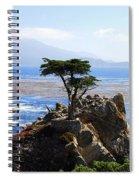 Lone Cypress Tree In Monterey In California Spiral Notebook